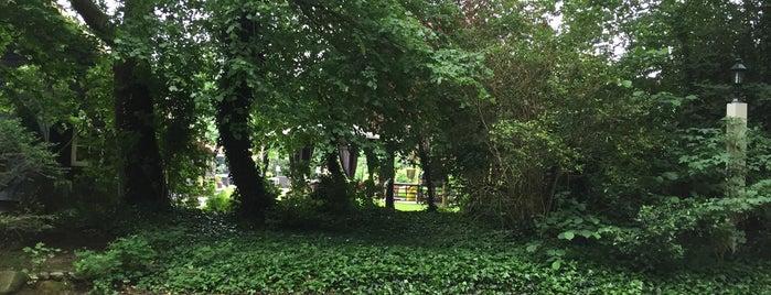 de groene lantaarn is one of Dinnercheque top lokaties.