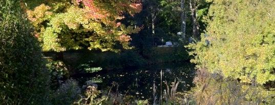 Tiergarten is one of Germany.