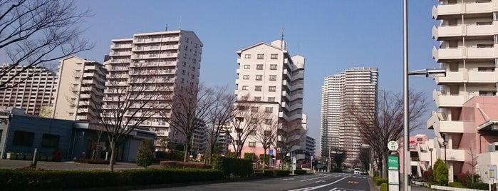 汐入公園前 バス停 is one of 都営バス 南千47.