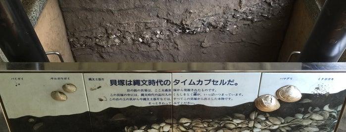 大森貝塚遺跡庭園 is one of ☆.