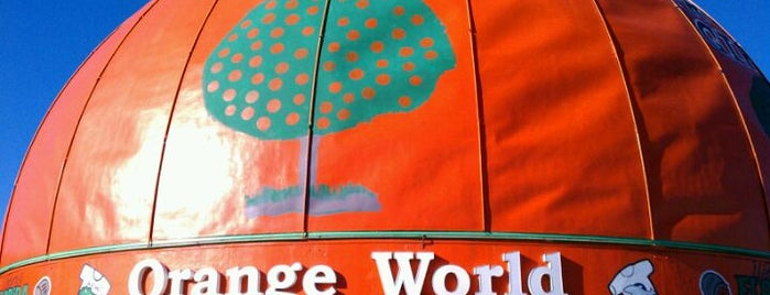 Orange World is one of Buildings Shaped Like the Food They Serve.