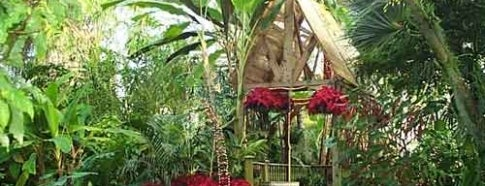 Myriad Botanical Gardens is one of Oklahoma City's Best!  #visitUS.