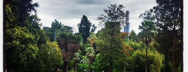 Royal Botanic Gardens is one of Quintessential Melbourne.