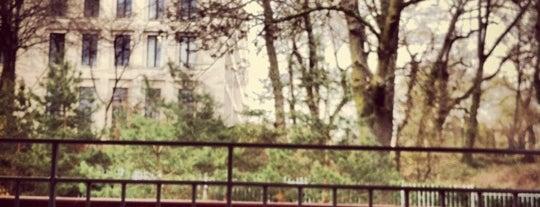 Koreanischer Garten Grüneburgpark is one of Must-visit Parks & Outdoors in Frankfurt.