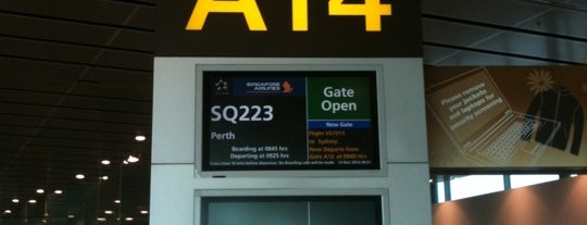 Gate A13 is one of SIN Airport Gates.