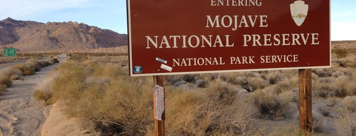 Mojave National Preserve is one of National Parks.