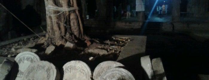 Mandapeshwar Caves is one of Mumbai Maximum.