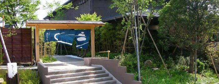 宮前平源泉 湯けむりの庄 is one of Tokyo Onsen.