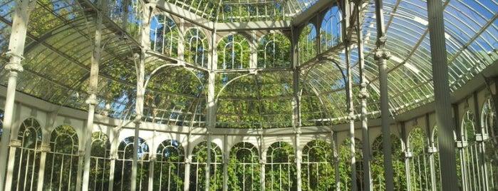 Palacio de Cristal del Retiro is one of @ Madrid (MD, España).