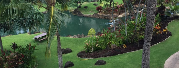 Marriott's Waiohai Beach Club is one of Kauai Favorites.
