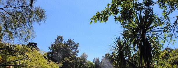 Pukekura Park is one of New Plymouth To-Do List.