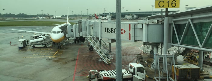 Gate C16 is one of SIN Airport Gates.