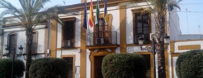 Ayuntamiento de Gines is one of Ayuntamientos Sevilla.
