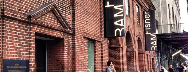 BAM Fisher is one of Brooklyn's Must-Do's.