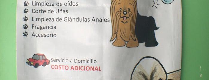 Súper mascotas is one of mascotas.