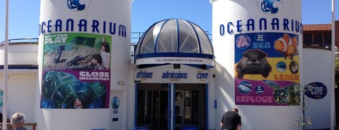 Oceanarium, The Bournemouth Aquarium is one of Shelbyart's Favourite Places.