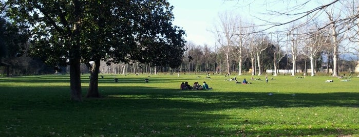 Parco delle Cascine is one of Free WiFi - Italy.