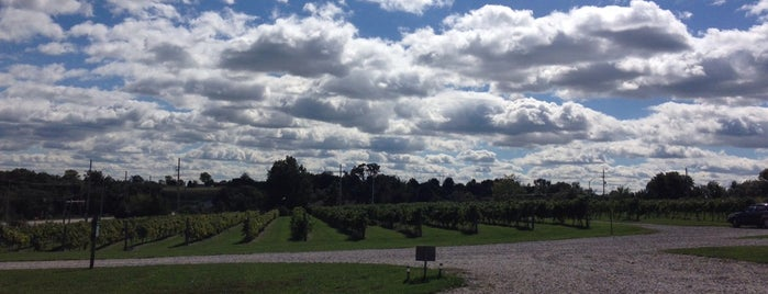 Stone Pillar Vineyard & Winery is one of Favorite Places.