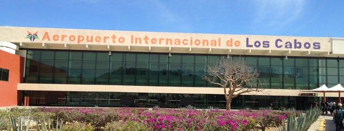 Aeropuertos - Aeropuerto de los cabos mexico ...