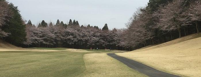 宍戸ヒルズカントリークラブ 東コース is one of ゴルフ場(茨城).