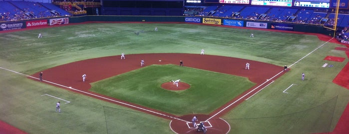 Tropicana Field is one of MLB Parks.