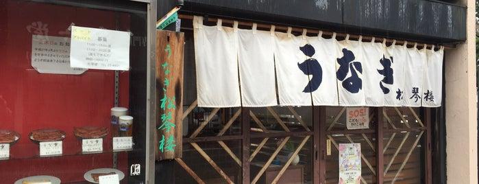 うなぎ 松琴楼 is one of お食事処.