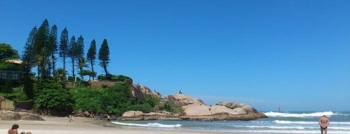 Praia da Joaquina is one of sem perímetro.