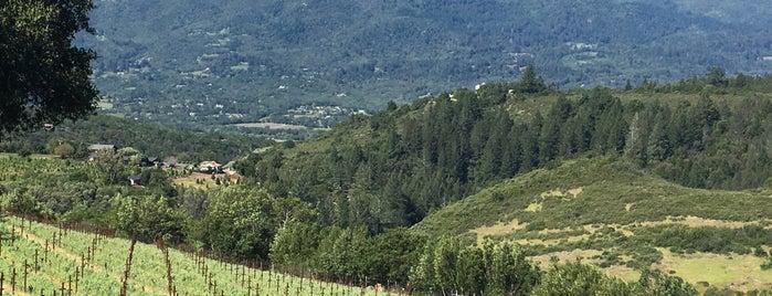 Moon Mountain Vineyard is one of Wineries / Vineyards.
