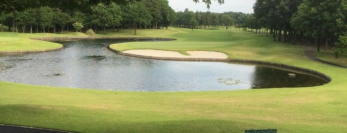 太平洋クラブ&アソシエイツ 江南コース is one of Top picks for Golf Courses.