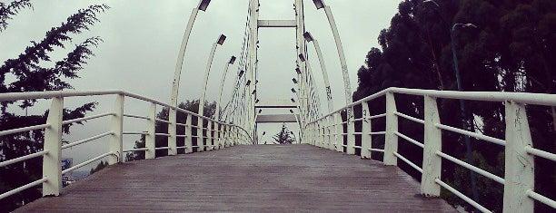 Parque  Gral. Vicente Guerrero is one of Lugares para correr.