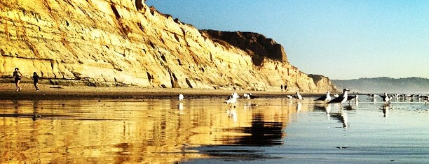 Torrey Pines State Beach is one of Top 10 places to try this season.