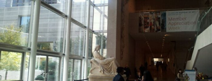 Dallas Museum of Art is one of Dallas Outings.