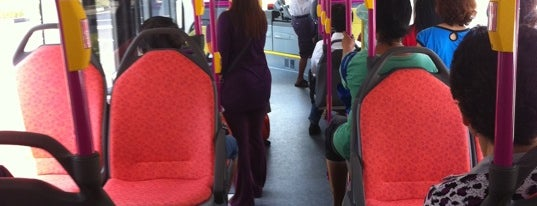 SBS Transit: Bus 53 is one of Top 10 favorites places in Singapore.