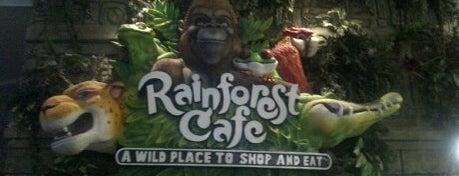 Rainforest Cafe Dubai is one of Explore Dubai.