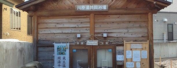 蔵王温泉 川原湯共同浴場 is one of 俺の日帰り温泉(仮).