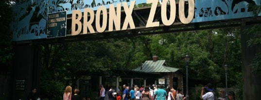 Bronx Zoo is one of Andy's NY To-Do List.