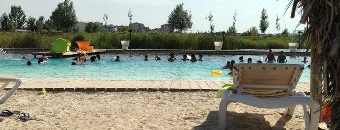 Las Playas Terraza & Lounge Club is one of Sitios por visitar en Zaragoza.