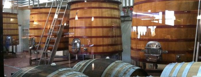 Tablas Creek Vineyard is one of Paso Robles Wineries.