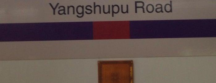 Yangshupu Rd. Metro Stn. is one of Metro Shanghai.