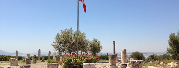 Carthage | قرطاج is one of Tunis City Badge - Bab el Bahr.