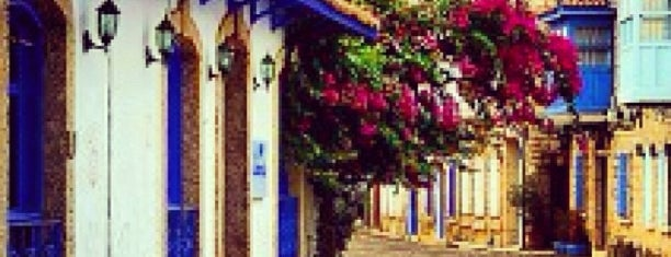 Alaçatı is one of Must-visit Great Outdoors in İzmir.