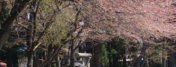 多賀神社 is one of Shinto shrine in Morioka.