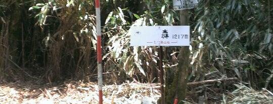 明神ヶ森 is one of 四国の山.