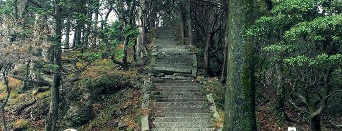 篠山 山頂 is one of 四国の山.