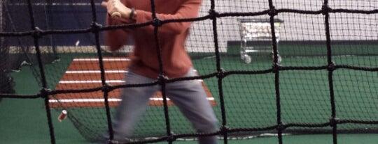 Verizon Dugout at Citi Field is one of Baseball Venue NY.