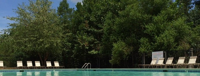 Little Suwanee Pointe Pool is one of The Regulars.