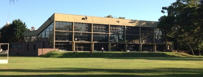 Colegio Ward is one of my b.a..