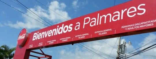 Campo Ferial de Palmares is one of mis lugares.