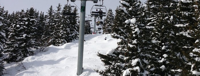 Coqs Lift is one of Skigebiete.