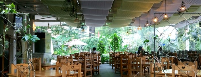 treehouse Cafe is one of Food Spots @Bandung.